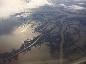 Image of the Mississippi River delta from 35,000 feet in the air.