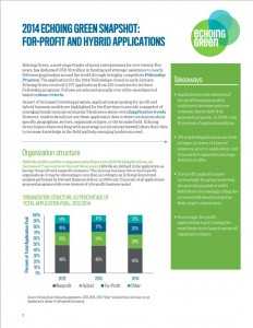 2014 Echoing Green Snapshot - For-profit and Hybrid Applications