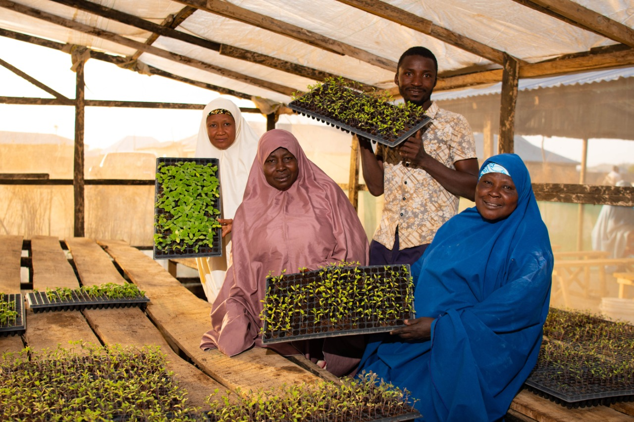 Rabia Kabiru (left) shows members of the Farmers' Service Center how tomato seedlings are grown. The center provides training for members and easy access to agricultural inputs.