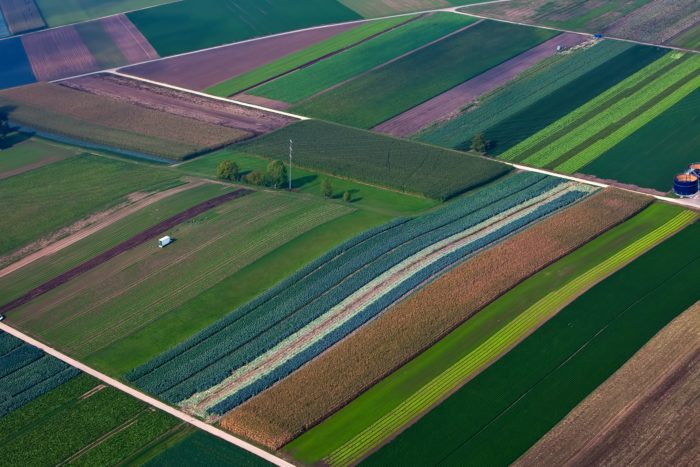 Aerial view of a field.
