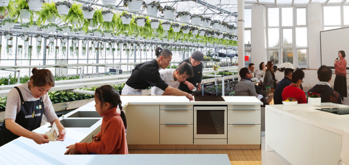 China Food system vision prize