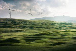 Wind turbine farm in a green field.