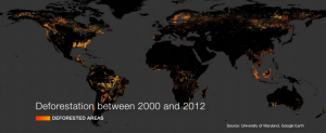 Deforestation between 2000 and 2012