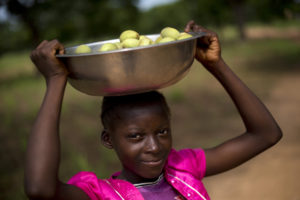 Veronique Abem collect figs while her family work in the fields planting maize in Burkina Faso.