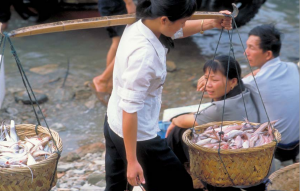 Woman carrying baskets filled with fish.