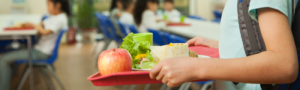 Child holding a school provided lunch.