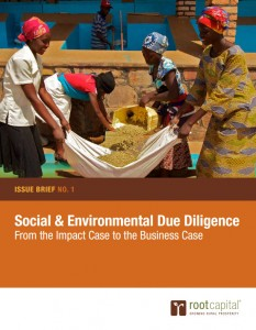 Social and Environmental Due Diligence - From the Impact Case to the Business Case