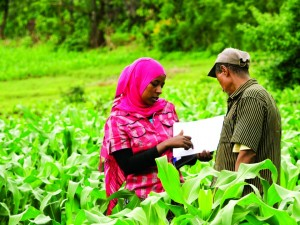 TechnoServe farmer training consults with a female member of the Shegole coffee farming cooperative in Ethiopia.