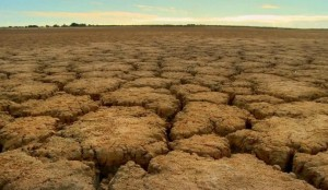 Cracks in the ground caused by a continuous drought.