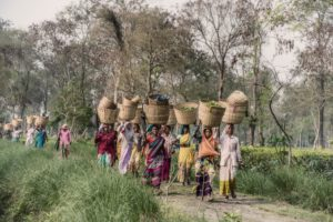 Villagers carrying basket over their heads.